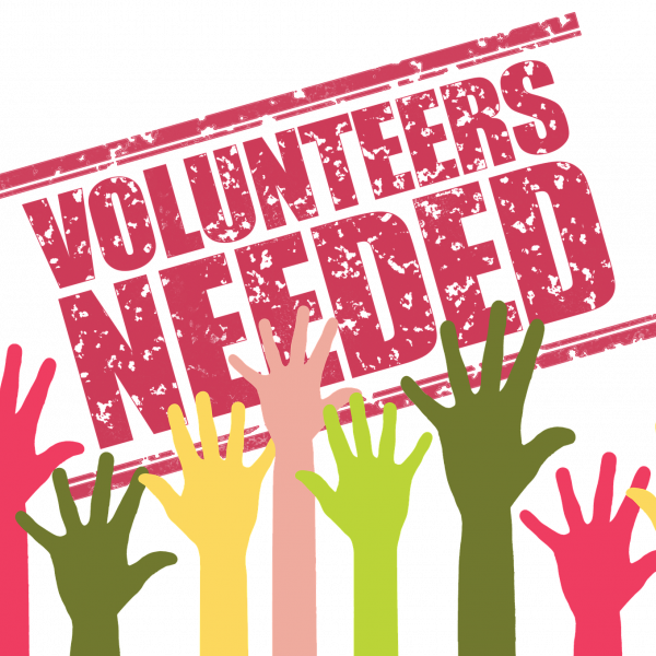 SIA needs you – read more about a range of volunteering opportunities